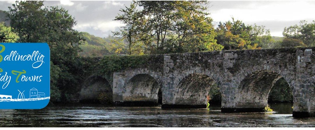 Inniscarra Bridge Closure