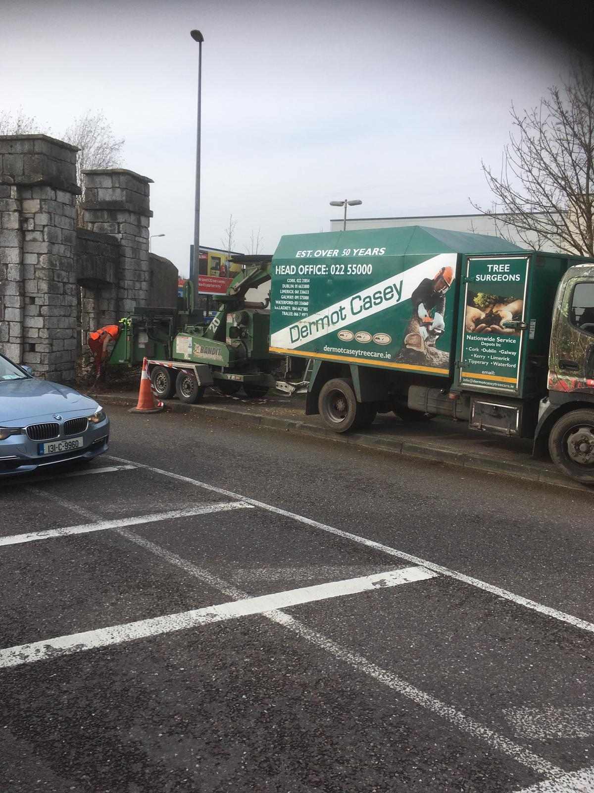 Eastgate Tree Removal