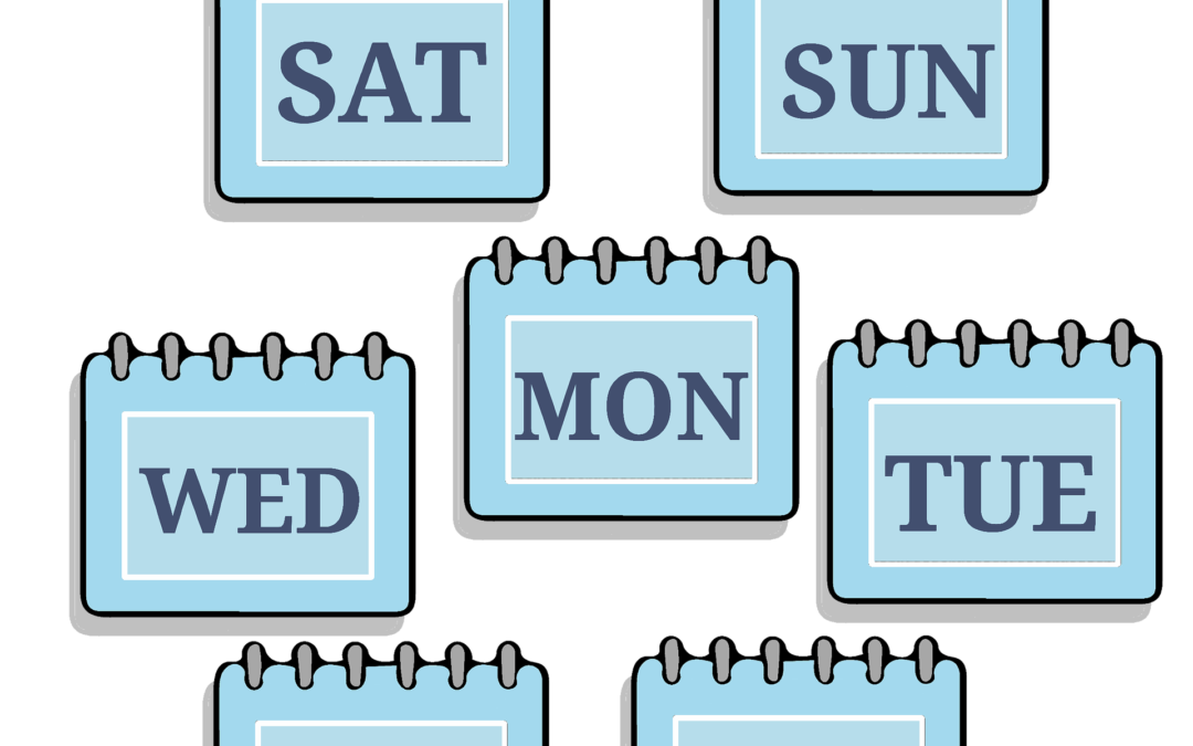 A WEEK IN THE LIFE…..